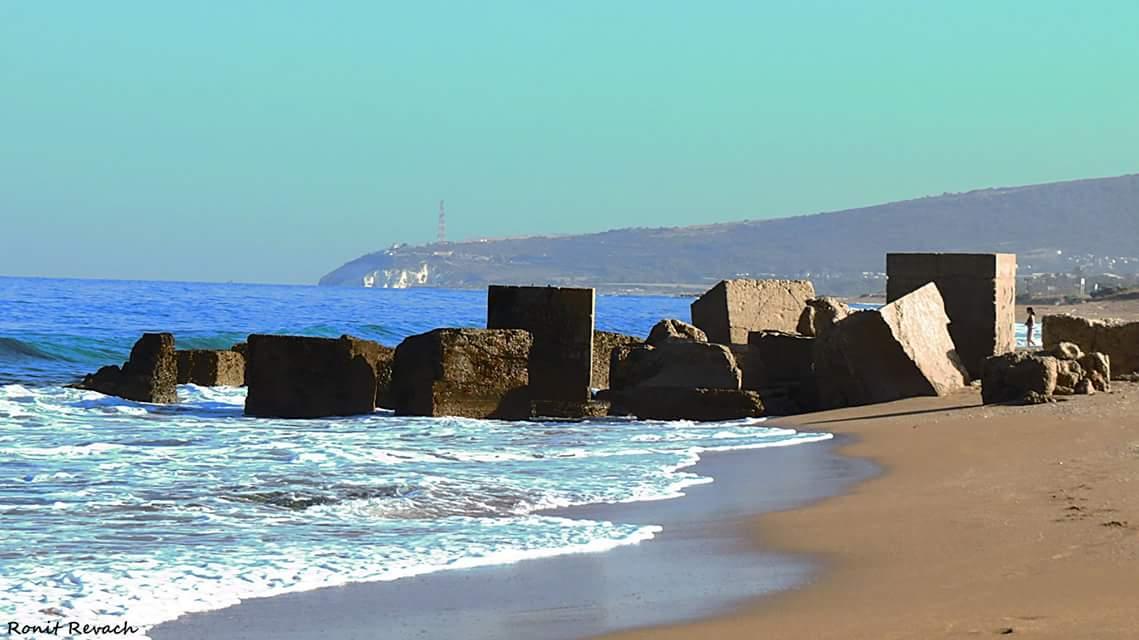 Бетонные кубы на берегу Нагарии