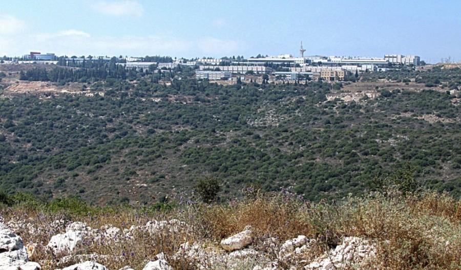 Предпринимателям Западной Галилеи: зона для совместной работы в Мигдаль Тефен