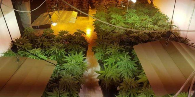Раскрыта огромная подземная лаборатория по производству наркотиков на Гаатоне